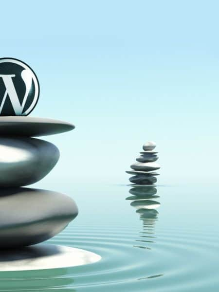 specialiste-cms-wordpress
