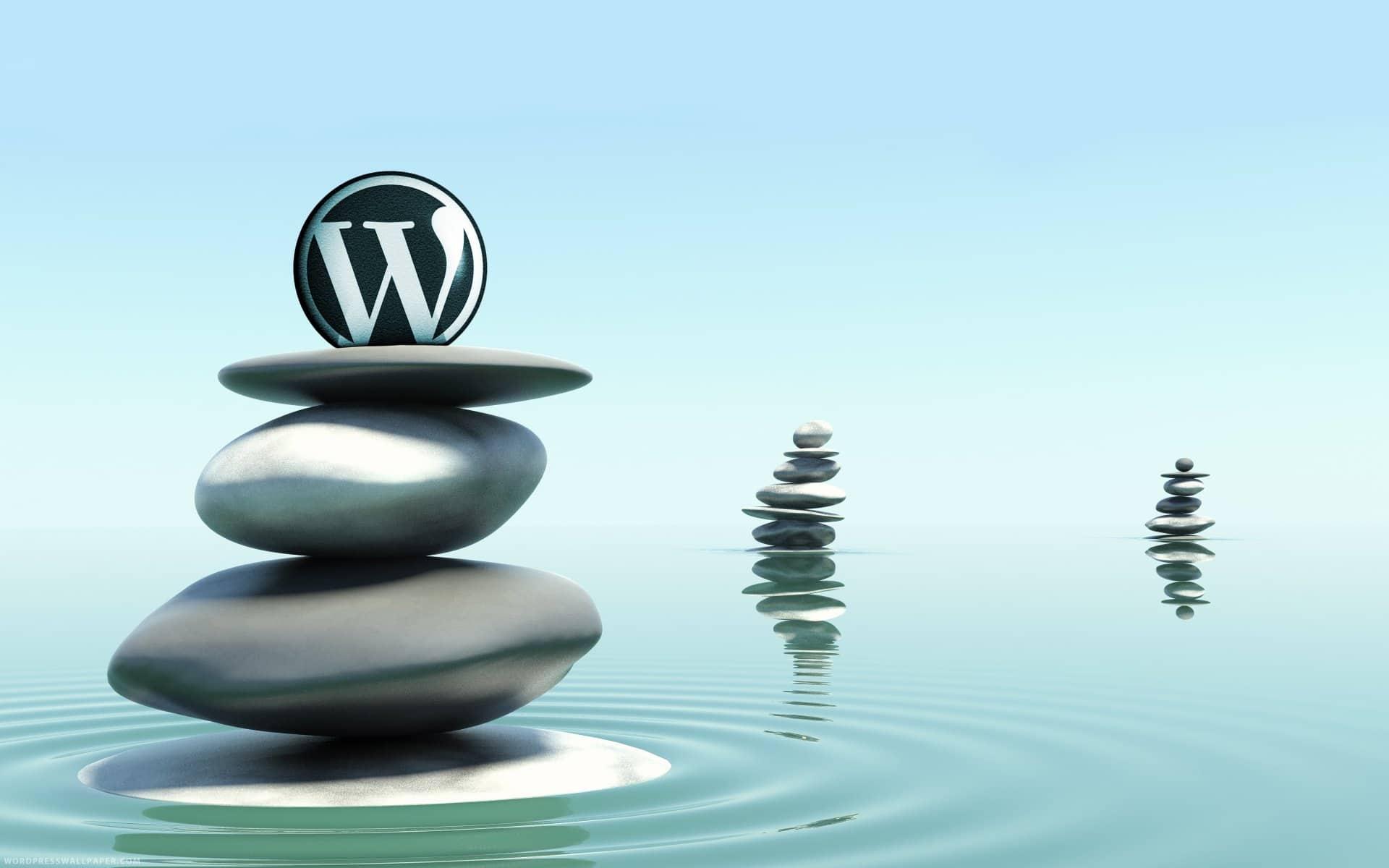 specialiste-cms-wordpress